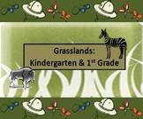 Grasslands (K to 2)