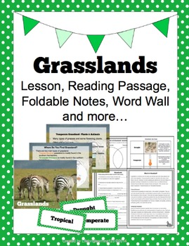 Grasslands: Lesson, Reading Passage, Foldable Notes, Word Wall & more...