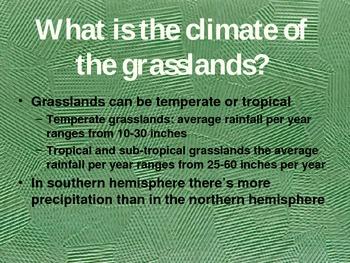 Grasslands PowerPoint