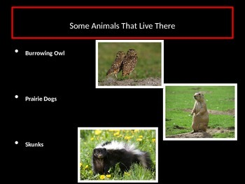 Grasslands PowerPoint Presentation