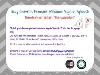 Gray Chevron Pennant Welcome Sign in Spanish ~ Bienvenidos