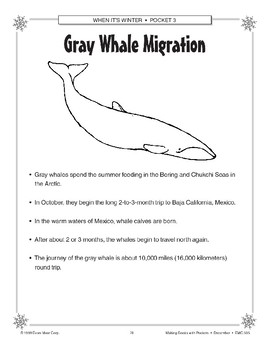 Gray Whale Migration Project