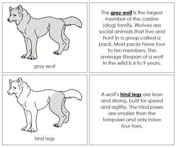 Gray Wolf Nomenclature Book