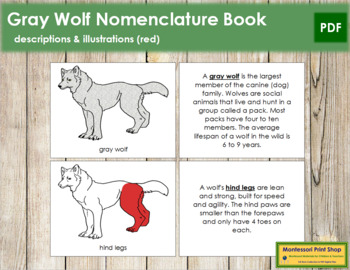 Gray Wolf Nomenclature Book - Red
