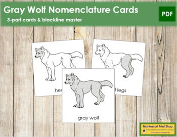 Gray Wolf Nomenclature Cards