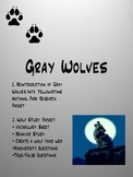 Gray Wolf Recovery Program in Yellowstone National Park
