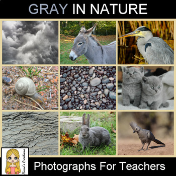 Gray in Nature Photograph Pack