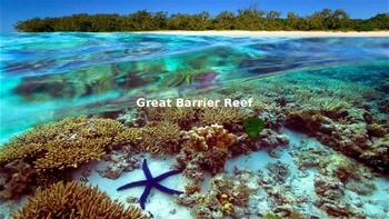 Great Barrier Reef Power Point - All the facts with great pictures information