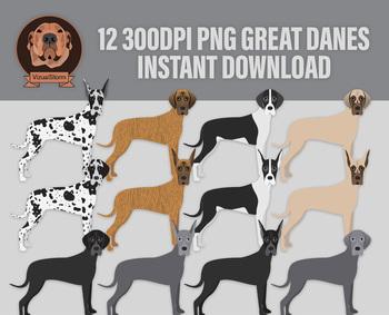 Great Dane Clip Art, 12 Hand Drawn Dog Illustrations - Various Colors & Markings