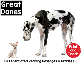 Great Danes Reading Passage