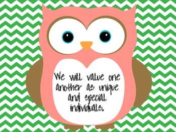 Great Expectations Owl and Green Chevron