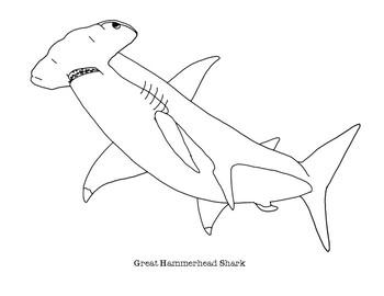 Hammerhead Shark Coloring Page | crayola.com | 270x350