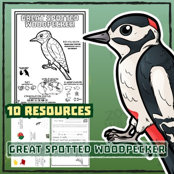 Great Spotted Woodpecker -- 10 Resources -- Coloring Pages, Reading & Activities