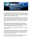 Great White Sharks Guided Reading passage and comprehension