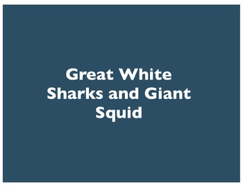 Great White Sharks and Giant Squid