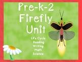 Spring Life Cycles Preschool-2  Lightning Bug/ Fire Fly