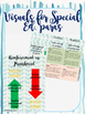 Great posters/ visuals for special education paraprofessionals