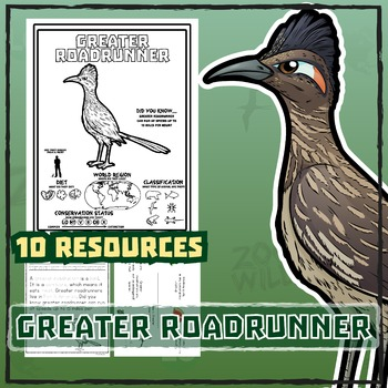 Greater Roadrunner -- 10 Resources -- Coloring Pages, Reading & Activities
