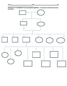 Greek God Family Tree Worksheets Teaching Resources Tpt