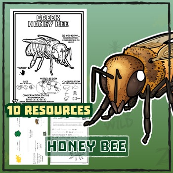 Honey Bee -- 10 Resources -- Coloring Pages, Reading & Activities
