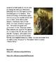 Greek Mythology Hera: Queen of the Gods