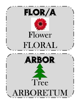 Greek and Latin Root/Prefix/Suffix Cards, part 1