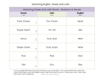 Greek and Latin Roots, Lesson and Activities