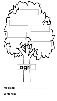 Greek and Latin Roots Vocabulary Tree