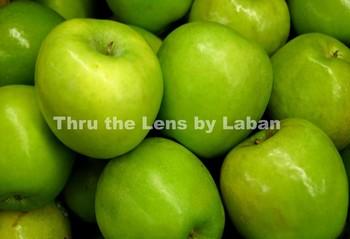 Green Apples Stock Photo #106