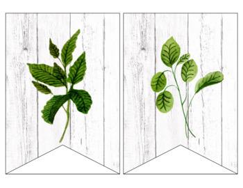 Watercolor Herbs Classroom Decor - Farmhouse Decor - Editable
