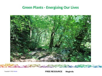 Green Plants - Energizing Our Lives