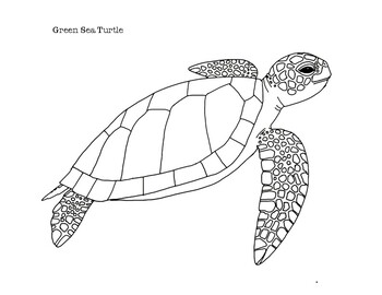 Top 10 Free Printable Cute Sea Turtle Coloring Pages Online | 270x350