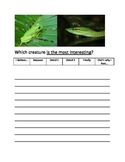Green Theme Opinion Writing (St. Patrick's Day)