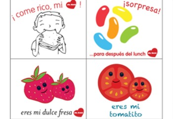 Lunch Box Notes-Spanish