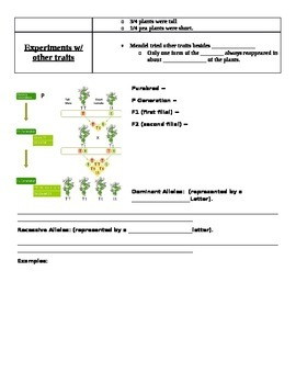 Gregor Mendel Fill In Notes (compliments Powerpoint)
