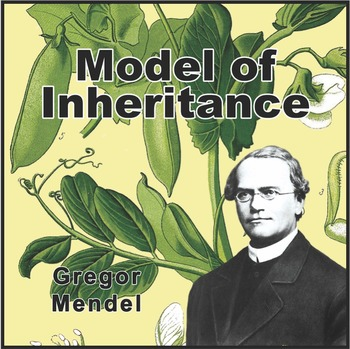 Gregor Mendel Poster (Influential Scientists Series)