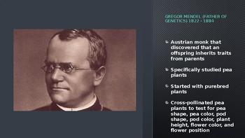 Gregor Mendel and Heredity
