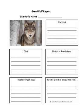 Grey Wolf Fill in the Blank Animal Report