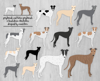 Greyhound and Italian Greyhounds Clipart - 13 Hand Drawn R