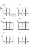 Box or Grid Worksheet for Long Division