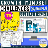 Grit and Growth Mindset Activity / Application & Reflectio