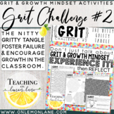 Grit and Growth Mindset Challenge / Application / Reflection Activity 2