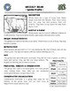 Grizzly Bear -- 10 Resources -- Coloring Pages, Reading &