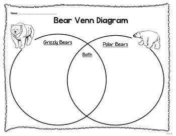 Grizzly Bear Vs. Polar Bear Venn Diagram
