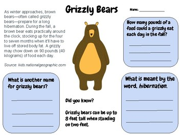Grizzly Bears - Reading Comprehension Passage