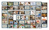Grocery Shopping Spanish Legal Size Photo Board Game