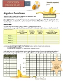 Grocery Store Math:  Algebra Readiness:  The basics of lin