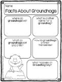 Groundhog Animal Research