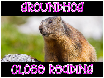 Close Read ~ Non Fiction Groundhogs