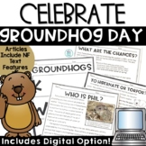 Groundhog Day Activities with Digital   Reading Comprehens